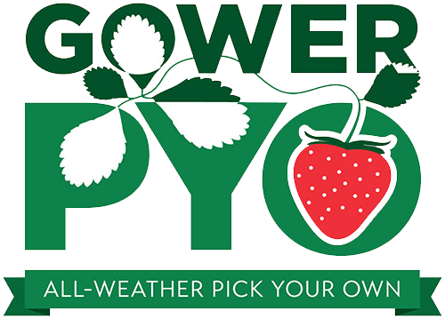 Gower PYO all-weather fruit farm Logo